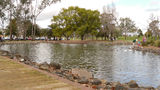 Picture relating to Tamworth - titled 'A pond in Bicentennial Park'