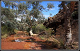 Picture of / about 'Mutawintji National Park' New South Wales - Mutawintji National Park