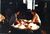 Picture relating to Uteara - titled 'Uteara...wool sorting/grading.'