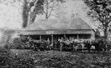 Picture relating to Woombye - titled 'Cobb's Camp Hotel at Woombye, Queensland, ca. 1872'