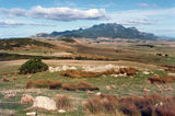 Picture relating to Flinders Island - titled 'Flinders Island'
