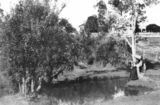 Picture relating to Wooloowin - titled 'Woman fishing at a waterhole at Wooloowin, Brisbane'
