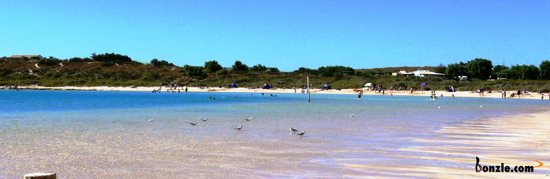 Picture of / about 'Coral Bay' Western Australia - Coral Bay