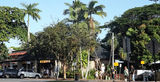 Picture relating to Port Douglas - titled 'Port Douglas Main Street'