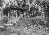 Picture relating to Collinsville - titled 'Bowen Consolidated Coal Mines site, Collinsville, ca. 1920'