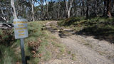 Picture of / about 'Mount Gingera' the Australian Capital Territory - Mount Franklin road past the Mount Ginini carpark on its way to Mount Gingera