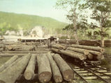 Picture relating to Canungra - titled 'Mill log skids at the Canungra Sawmill'