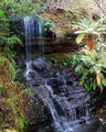 Picture relating to Eaglehawk Neck - titled 'Shower Falls'
