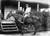 Picture of / about 'Ingham' Queensland - Sir Alfred Sandlings Cowley