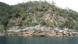 Picture relating to South Bruny National Park - titled 'South Bruny National Park'