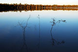 Picture relating to Yarrie Lake - titled 'Still waters'