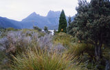 Picture of / about 'Cradle Mountain' Tasmania - Cradle Mountain