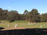 Picture relating to Artarmon - titled 'Cricket on Artarmon Oval'