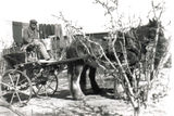 Picture relating to Amiens - titled 'Fred 0n Fertilizer Spreader'