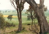 Picture of / about 'Cudal' New South Wales - Cudal Farming Scene.