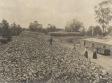 Picture relating to Tivoli - titled 'View of the Rothwell Haig Coke Ovens and yards, Tivoli, ca. 1908'