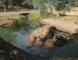 Picture of / about 'Irwin River' Western Australia - Irwin River