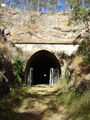 Picture relating to Cooyar - titled 'Cooyar - Muntappa Tunnel'