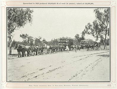 Picture of / about 'Wyandra' Queensland - Wool teams delivering wool to the rail-head at Wyandra, Western Queensland, ca. 1924
