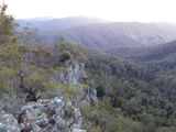 Picture relating to Dingo Peak - titled 'Dingo Peak Ridge'