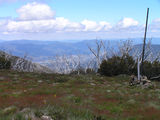 Picture relating to Mount Bogong - titled 'Mount Bogong'