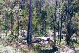 Picture of / about 'Mount Strathbogie' Victoria - Mount Strathbogie: Kangaroo Creek bush camp