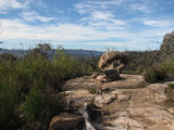 Picture relating to Mount Tennent - titled 'Cypress Pine Lookout'