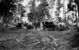 Picture of / about 'Oxley' Queensland - Gathering of early model motor vehicles in the bush at Oxley, 1930