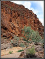 Picture of / about 'Arkaroola' South Australia - Barraranna Gorge