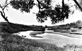 Picture relating to Cuppacumbalong - titled 'Murrumbidgee River at Cuppacumbalong Station'