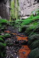Picture relating to Carnarvon Gorge - titled 'Carnarvon Gorge - The Amphitheatre'