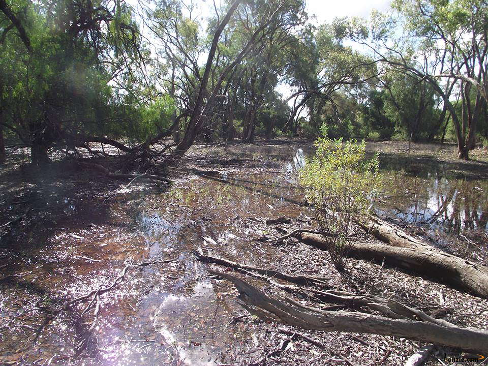 Picture of / about 'Narwarre' New South Wales - Narwarre