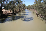 Picture relating to Lachlan River - titled 'Lachlan River at Hillston'