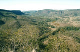 Picture relating to Cania Gorge - titled 'Cania Gorge'