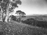 Picture relating to Parliament House - titled 'Part of Reid from Mt Ainslie. Old Parliament House on the left.'