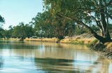 Picture of / about 'Cooper Creek' South Australia and Queensland - Cooper Creek
