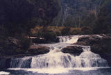 Picture of / about 'Dove River' Tasmania - Dove River