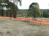 Picture relating to O'Connor - titled 'Tree clearing on O'Connor Ridge in preparation for the Gungahlin Drive extension'