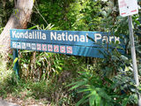 Picture relating to Kondalilla National Park - titled 'Kondalilla National Park'