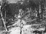 Picture relating to Black Mountain - titled 'Black Mountain Reservoir. Pipe line trench to reservoir.'