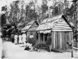 Picture relating to Queensland - titled 'Group of South Sea Islander labourers outside their bark hut dwellings, Queensland'