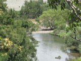 Picture of / about 'Macleay River' New South Wales - Macleay River/5Day Creek