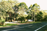 Picture relating to Tostaree - titled 'Tostaree; Hospital Creek Rest Area, Princes Hwy'