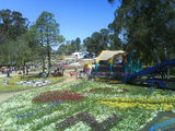 Picture relating to Parkes - titled 'Floriade 2008'
