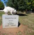 Picture relating to Trentham - titled 'Trentham'