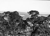 Picture relating to Parliament House - titled 'Distant view of Old Parliament House from Mt Ainslie'