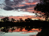Picture relating to Murray River - titled 'sunset on the murray.'