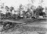 Picture of / about 'Cordalba' Queensland - Workers gather for a meeting at Cordalba, Queensland, 1911