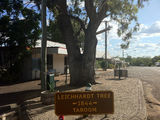 Picture of / about 'Taroom' Queensland - Taroom