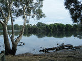 Picture of / about 'Lara' Victoria - Lake Serendip
